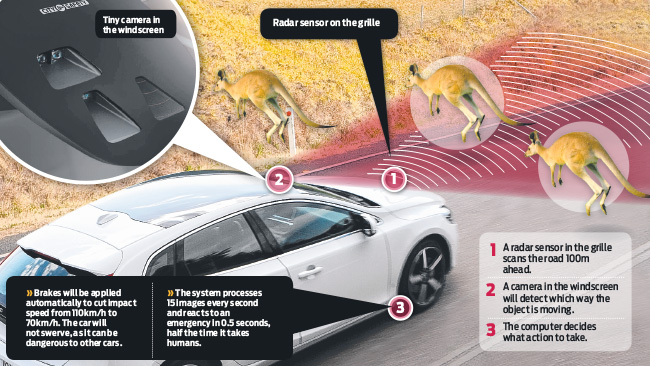 Volvo Introduces The Crash Test Kangaroo To Test Automatic